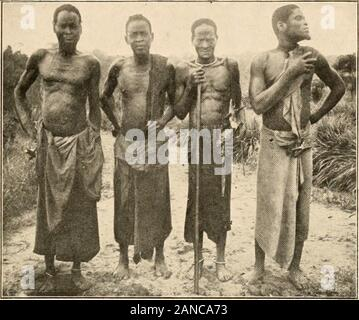 Notes ethnographiques sur quelques tribus de l'Afrique équatoriale française . Fig. 3.- Typ, Planche II.. Fig. i. - Types Pomo. (Photo G. Bruel). - Stock Photo