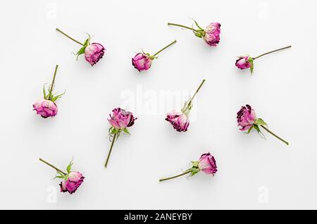 Vintage floral background made of dried roses on white background. Flat lay, overhead. - Stock Photo