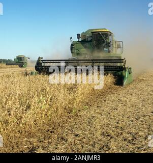 John Deere combine, harvesting dusty, dry ripe soybean crop on a clear fall day with blue sky, Louisiana, USA, October. - Stock Photo