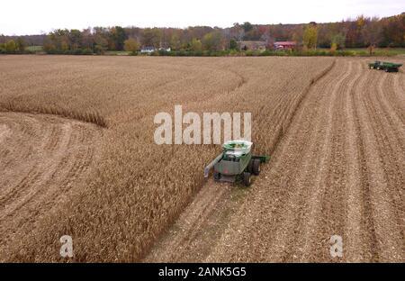 Drone aerial combine corn harvest Ohio - Stock Photo