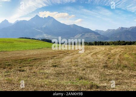 rural landscape of slovakia in summer. empty wheat field in august. high tatras mountain ridge in the distance. sunny weather with clouds on the sky - Stock Photo