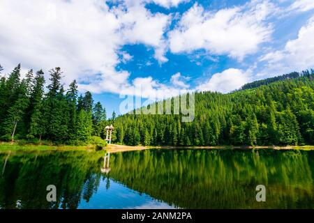 synevir mountain lake in summertime. great outdoor nature scenery. coniferous forest with tall trees on the shore reflecting in clear water. deep blue - Stock Photo