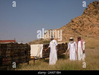 Saudi beekeepers working in the beehives, Jizan province, Addarb, Saudi Arabia - Stock Photo