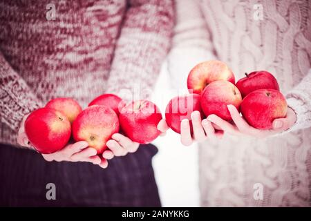 Crop couple in love in knitted sweaters holding red apples. Happy valentines day greeting card.  - Stock Photo