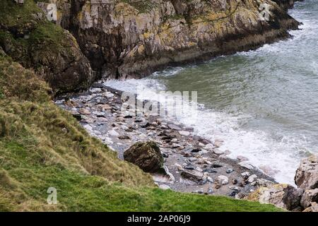 Looking down to Atlantic Grey Seals (Halichoerus grypus) lying on stony beach in Angel Bay on Little Ormes Head, Llandudno Wales UK - Stock Photo