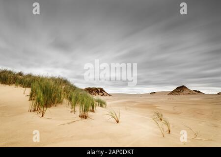 Wind moving grass in a wide area of sand dunes, movement traces of the clouds by long exposure, depth effect - Poland, Slowinski Park Narodowy - Stock Photo