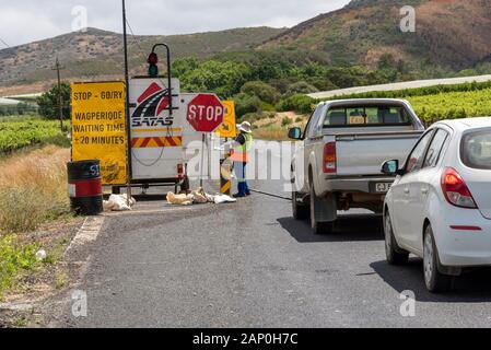 Riebeek West, South Africa. December 2019. Traffic control with stop go board controls traffic on a busy highway in the Western cape, South Africa. - Stock Photo