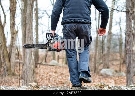 Lumberjack using a Gas-Powered Chain Saw cutting trees close up - Stock Photo