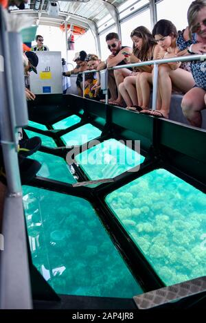 People visiting the Great Barrier Reef and travelling on a glass bottomed boat looking at coral in blue water, Queensland Australia - Stock Photo