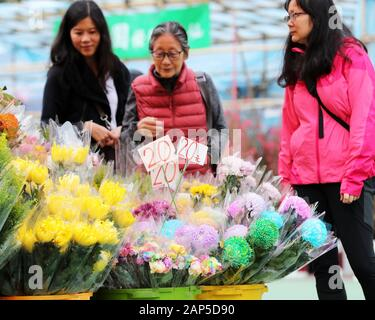 Hong Kong, China. 21st Jan, 2020. People select flowers at a market to greet the Spring Festival at the Victoria Park in Hong Kong, south China, Jan. 21, 2020. Credit: Li Gang/Xinhua/Alamy Live News - Stock Photo
