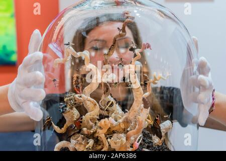 Islington, London, UK. 21st Jan, 2020. An Eruption by Tessa Farmer in the Bo-Lee gallery - - The London Art Fair, at the Business Design Centre in Islington. Includes international galleries selling modern and contemporary artworks. Credit: Guy Bell/Alamy Live News - Stock Photo