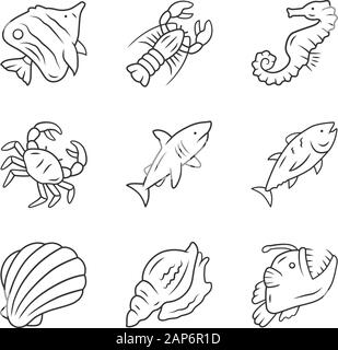 Marine animals linear icons set. Swimming shark, anglerfish, butterflyfish. Underwater creature. Aquatic organism. Thin line contour symbols. Isolated - Stock Photo