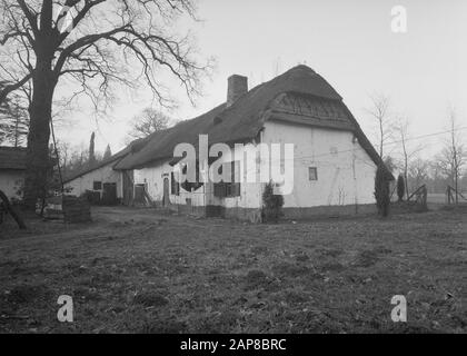 Farm will be moved to Belgian Open Air Museum Domain of Bokrijk at Genk Annotation: Kilbershoeve from Meenen. In 1959 to Open Air Museum Date: January 1957 Location: Belgium Keywords: farms, buildings, open-air museums - Stock Photo