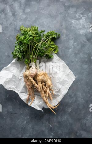 Fresh white parsley roots on gray background - Stock Photo