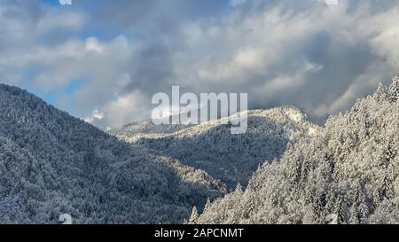 Panoramic view of winter landscape in the mountains - Stock Photo