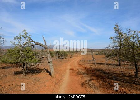 The Arkapena track winding through the Flinders Ranges National Park for off-road driving, South Australia, Australia - Stock Photo