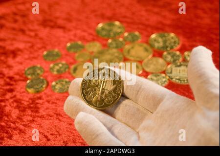 Goldmünzen (Wiener Philharmoniker) - Gold Coins (Wiener Philharmoniker) - Stock Photo