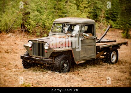 A 1948 Willys Jeep truck in a wooded area near Noxon, Montana.  This image was shot with an antique, uncoated Petzval lens, and may show signs of dist Stock Photo