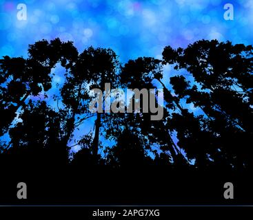 Forest silhouette against blue night sky vector background - Stock Photo