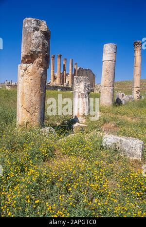 Jordan. Free standing stone columns and other scattered debris is all that remains at the the ancient Roman City of Jerash not far from the Jordan capital city of Amman in the Middle East - Stock Photo