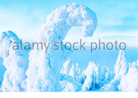 Winter landscape. Sunrise over the hillside. The trees are completely covered in snow. Mountain in Lapland, Ruka. - Stock Photo