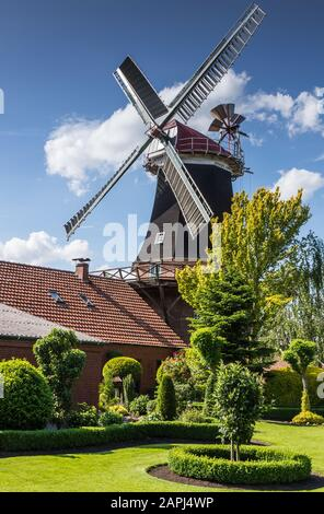 Windmill Rhaude in green nature in the county of Leer, East Frisia, Lower Saxony, Germany - Stock Photo