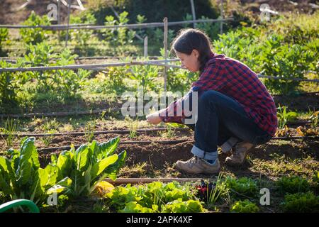 Young woman doing urban gardening on sunny day in spring