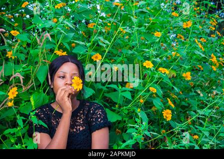 beautiful young african woman holding a tree marigold sunflower close to her face