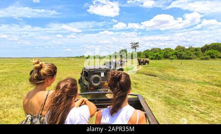 MASAI MARA, KENYA, January, 2019:: Tourists in all-terrain vehicle exploring the elephants in Masai Mara, Kenya in safari drive - Stock Photo