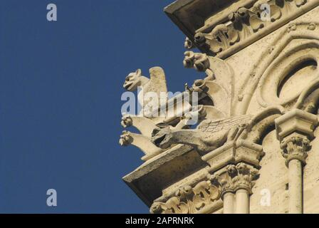 Prior to the tragic fire in the  Notre Dame cathedral in Paris, France.  Close up of gargoyles and architectural details. - Stock Photo