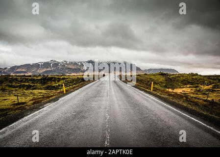 Isolated road surrounded by tundra; Iceland