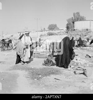 Bedouins with donkeys. Report /Series: Israel 1960-1965: Bedouins in Beershewa (Beer Sheva). - Stock Photo