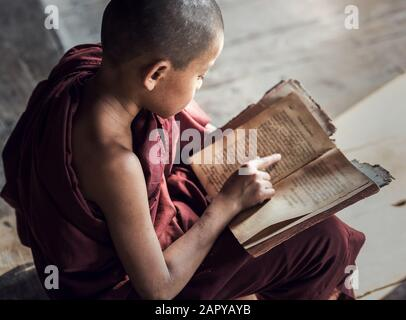 Young Buddhist novice monk reading and study in monastery, Myanmar - Stock Photo