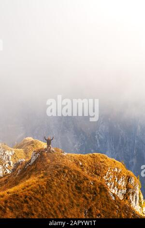 Hiker standing at the edge of cliff and being excited because of the view - Stock Photo