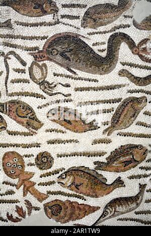An ancient Roman mosaic from the 4th century A.D. depicting fish and other sea creatures at the Bardo National Museum in Tunis, Tunisia. - Stock Photo