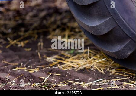tractor wheel on the field close-up, agricultural machinery, harvesting - Stock Photo