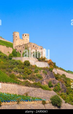 Historic Maus Castle, Sankt Goar Germany, seen from along the Rhine River