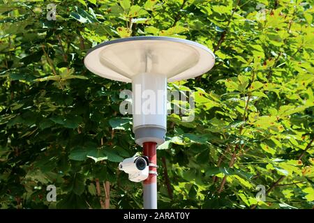 Large street lamp with small modern white closed circuit TV CCTV camera mounted on same strong metal pole in front of dense leaves - Stock Photo
