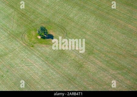 Aerial view of a cluster of trees in a green ploughed and planted field near Geraldton in Western Australia - Stock Photo