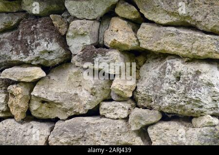 Stone wall of shell rock, lightly covered with moss, folded by hand.  - Stock Photo