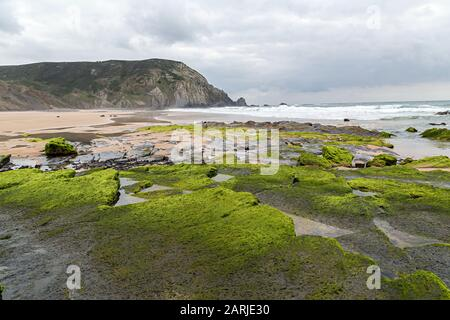 Rocks with seaweed, Praia do Castelejo, Algarve, Portugal - Stock Photo