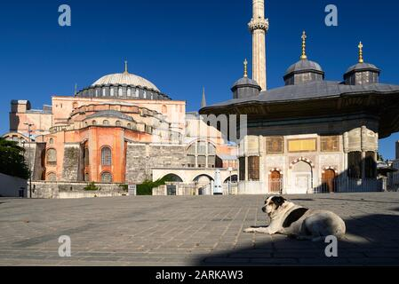 Hagia Sophia and the Fountain of Sultan Ahmet III - Stock Photo