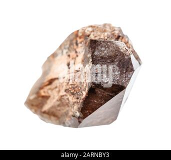 closeup of sample of natural mineral from geological collection - unpolished crystal of smoky quartz morion isolated on white background - Stock Photo