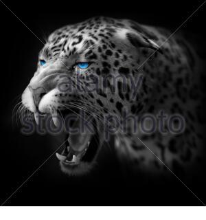 Jaguar Head 3D render - Stock Photo