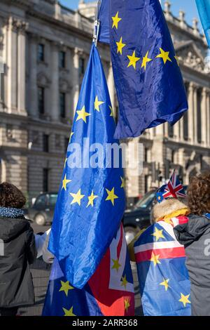 London, UK. 29th Jan, 2020. Anti Brexit protesters outside the Palace of Westminster Credit: Ian Davidson/Alamy Live News - Stock Photo