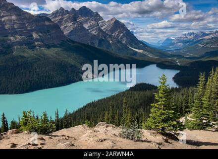 Peyto Lake and Mount Patterson, Waputik Range, Banff National Park, Canadian Rockies, Alberta, Canada - Stock Photo