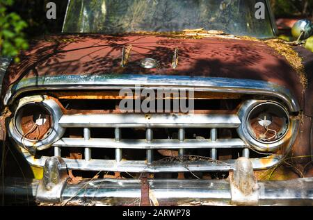 Close-up Image of the Front of an Old Scrap Truck in a Junk Yard - Stock Photo