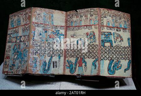 Maya Codex, Anthropology Museum, Mexico City, Mexico - Stock Photo