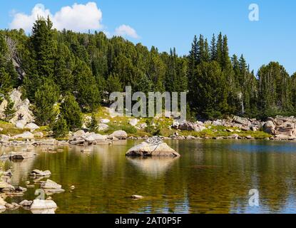 The crystal clear water of a mountain lake shows the rocks at it's bottom. Surrounded by a pine forest, it makes for a scenic and serene landscape. - Stock Photo