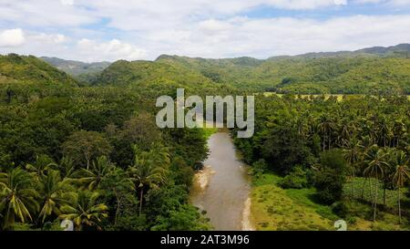 Mountain river on a tropical island, top view. Mountains and hills are covered with evergreen forest. Beautiful landscape in the Philippines. A river in the mountains on Leyte Island, - Stock Photo